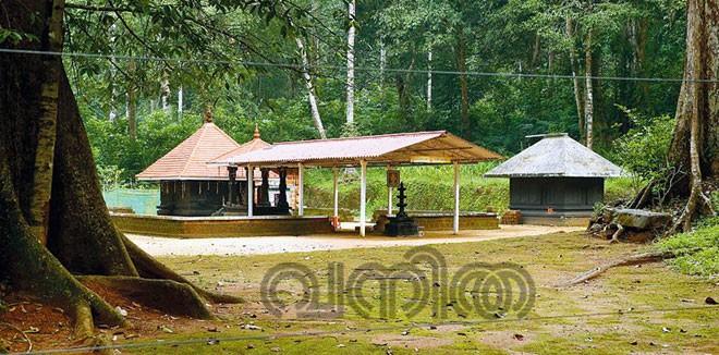 pooyamkutty2.jpg.image.784.410