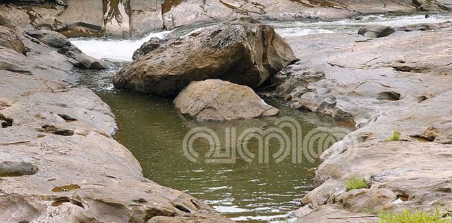 pooyamkutty8.jpg.image.784.410