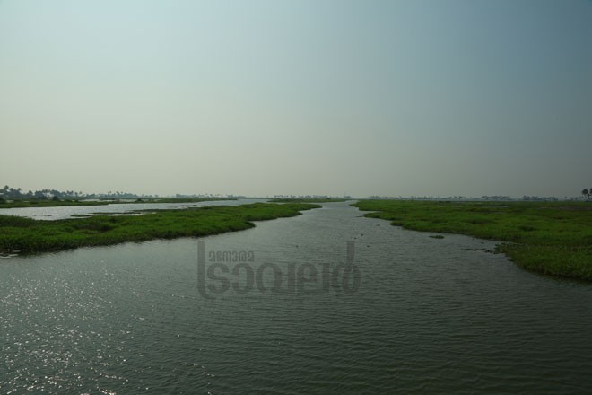 6)Vembanad-Kayal