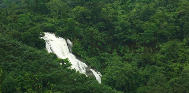 4)-Mankulam---Pampinkayam-falls
