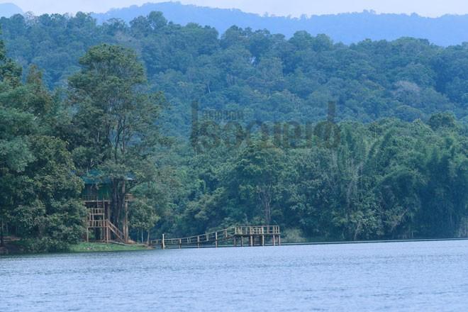 3)Bamboo-island