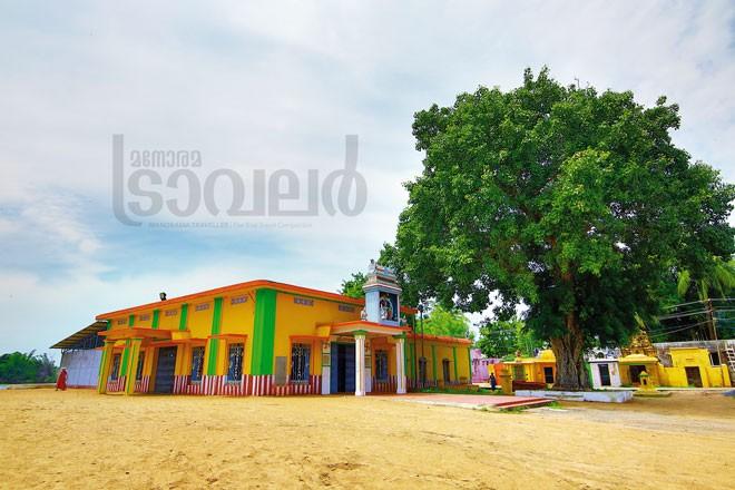 2)Thanjavur---Thyagaraja