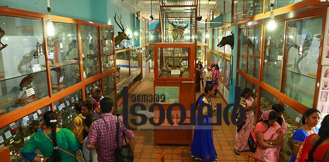 9)-Kodaikanal-Museum