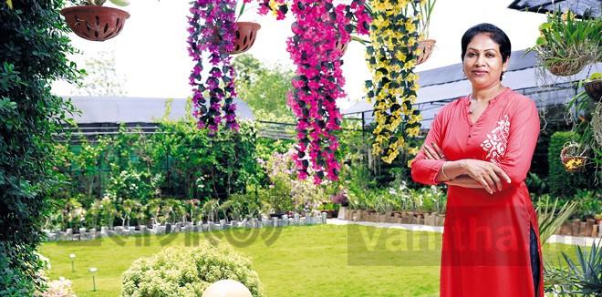 Suma - Interior gardening expert