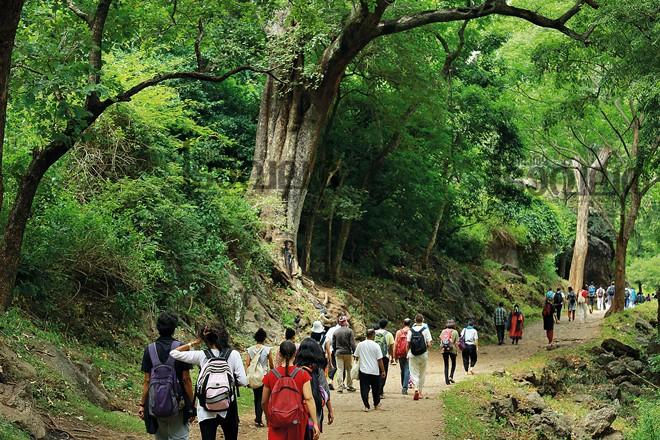 4)-Siruvani-Forest-area