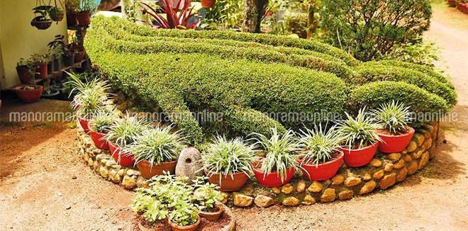 hobby-garden-konny.jpg.image.784.410