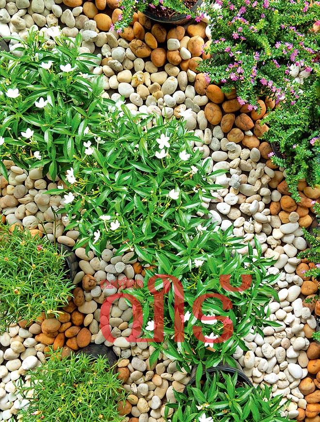 pebbles-2